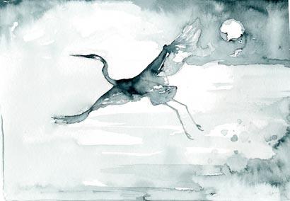 heronwings.jpg